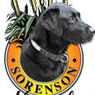 Sorenson Kennels , Kennels, Services, Defiance, Missouri