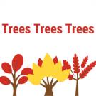 Trees Trees Trees, Concrete Contractors, Pressure Washing, Tree Service, Merritt Island, Florida