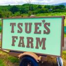 Tsue's Farm, Restaurants, Family Activities, Kayaking & Rowing, Haleiwa, Hawaii
