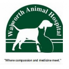 Walworth Animal Hospital, Veterinary Services, Animal Hospitals, Veterinarians, Walworth, New York