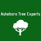 Asheboro Tree Experts, Tree Service, Services, Climax, North Carolina