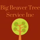 Big Beaver Tree Service Inc, Tree & Stump Removal, Services, Nicholasville, Kentucky