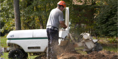 3 Unexpected Stump Grinding Advantages, Marinette, Wisconsin