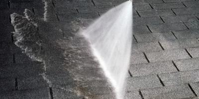 The Preventative & Restorative Benefits of Roof Cleaning, North Haven, Connecticut