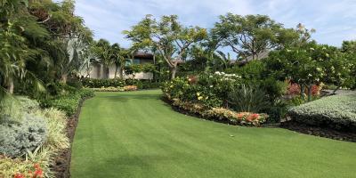4 Signs Your Landscape Needs More Love & Care, Eleele-Kalaheo, Hawaii