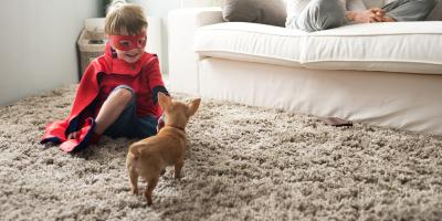 3 Reasons Professional Carpet Cleaning Is a Wise Investment, Great Falls, Montana
