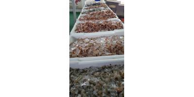 October is National Seafood Month, Bon Secour, Alabama