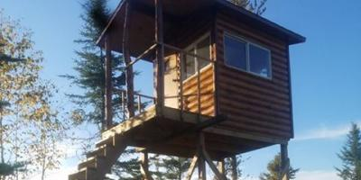 Reasons to Hire General Contractors to Build a Deer Stand or Hunting Shack, Rainy Lake, Minnesota