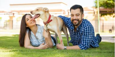 3 Lawn Care Tips for New Homeowners, Lincoln, Nebraska