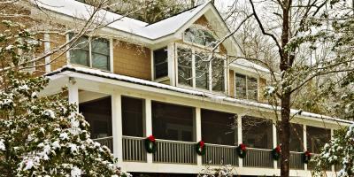Why You Should Perform Tree Care Before Winter, Newburgh, New York