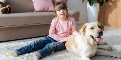 4 Durable Flooring Options for Pet Owners, Lincoln, Nebraska