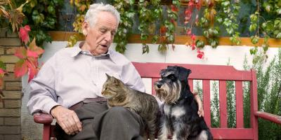 A Guide to Preventing Loneliness In Seniors, Toms River, New Jersey
