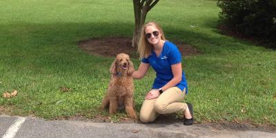 What Is Veterinary Acupuncture & What Are the Benefits?, Foley, Alabama