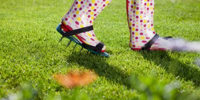 When Is Spring Aeration Good for a Lawn?, Enterprise, Alabama
