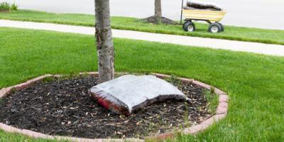 4 FAQ About Using Mulch in the Yard, Ragland, Alabama