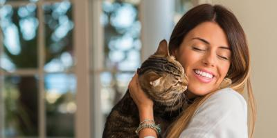 5 Common Cat Sounds & What They Mean, Lillian, Alabama