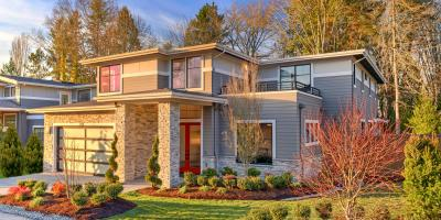 How Do Trees Cause Home Plumbing Problems?, Anchorage, Alaska