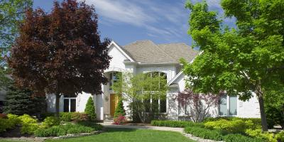 How to Protect Your Trees From Pests, Anchorage, Alaska