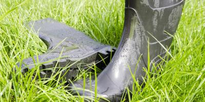 What Impact Does Poor Drainage Have on Your Lawn?, Wahiawa, Hawaii