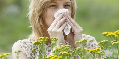 Everything You Need to Know About Pollen Allergies, Omaha, Nebraska