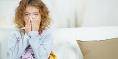 Allergy Immunology Clinic Sheds Light on 5 Common Myths, North Hempstead, New York
