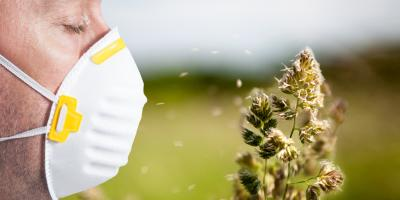 Allergy Immunology Professionals Offer 3 Tips to Get Through the Season, North Hempstead, New York