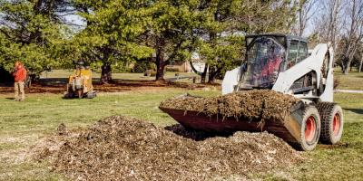 How Tree Removal Companies Protect Your Property While Working, Shawnee, Missouri