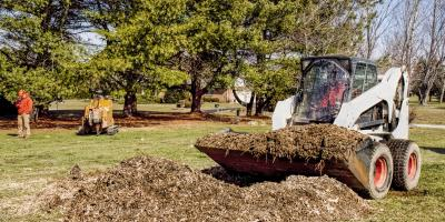 4 Ways to Prepare for Tree Removal Services, Anchorage, Alaska