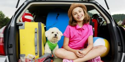 Animal Care Center Offers 3 Rules for Taking a Road Trip With Your Dog, Wailuku, Hawaii