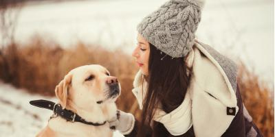 3 Common Winter Health Issues for Pets, Elyria, Ohio