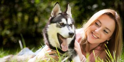 How Are Hot Spots On Dogs Treated? , Sharonville, Ohio