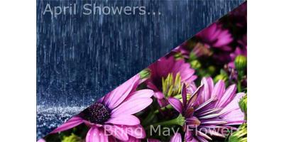April Showers Bring May Flowers, South River, Virginia