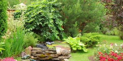 Do You Need Land Clearing Services for Your Summer Project?, Milton, Pennsylvania