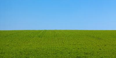 The Importance of a High-Quality Lawn Mower, Phillipsburg, Kansas