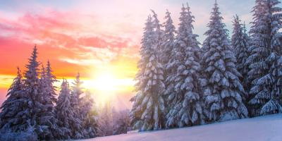 How to Prevent Septic Freezing This Winter, Powers, Minnesota