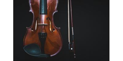Brains of violinists, Eagan, Minnesota