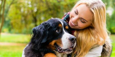 What Happens to Your Pets When You File for Bankruptcy?, Fairfield, Ohio