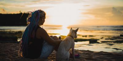How to Prepare Your Dog for Living in Hawaii's Heat, Keaau, Hawaii