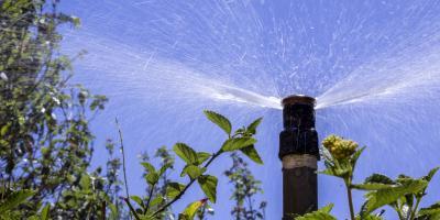 4 Benefits of Installing a Lawn Irrigation System, Lancaster, South Carolina