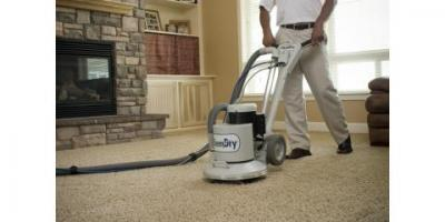 The Importance of Professional Carpet Cleaning Over Doing it Yourself, Gaithersburg, Maryland