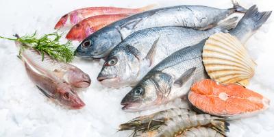 7 Best Fresh Fish to Eat During Summer, Bon Secour, Alabama