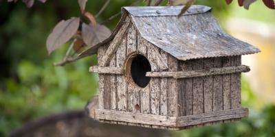 3 Ways Birdhouses Protect Your Garden, Bethel, Ohio