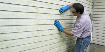 A Guide to Preventing & Treating Mold on Siding, North Bethesda, Maryland