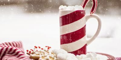Cyber Monday Special - Frozen, Unbaked Christmas Cutout Cookies, Byron, Wisconsin