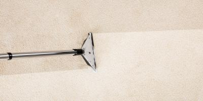 5 Reasons Professional Carpet Cleaning Is a Worthy Investment, Great Falls, Montana