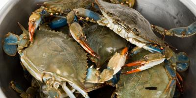 3 Delicious Ways to Prepare Fresh Blue Crab, Bon Secour, Alabama