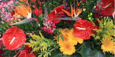 Top 5 Flower Trends of 2018, Branford Center, Connecticut