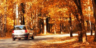 4 Driving Tips for Late Autumn, Bronx, New York