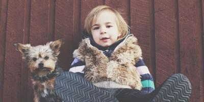 How to Choose Pet- & Child-Friendly Carpet, Brooklyn, New York