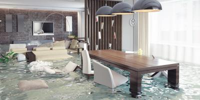 3 Reasons to Hire a Carpet Cleaning Professional for Flood Damage, St. Augustine, Florida